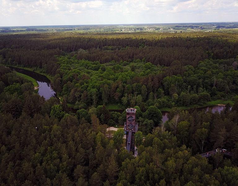 The Treetop Walking Path / Lajų takas