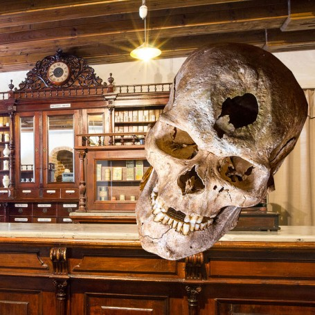 Museum of the History of Lithuania Medicine and Pharmacy