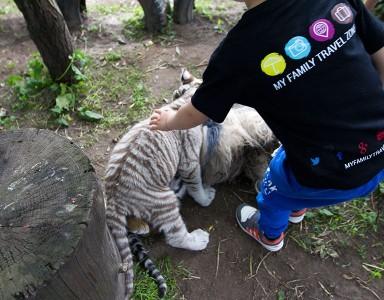 Klaipėda Zoo
