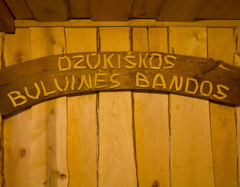 Traditional Potato Dish Dzūkiškos Bandos